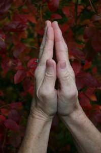 Gratitude, Being Grateful