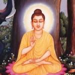 Practice Meditation, Let's Meditate